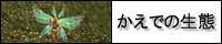 20111209_1046765.jpg